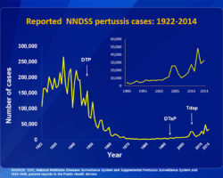 Lies About the Pertussis Vaccine